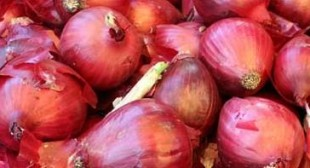 Putting Onion In Your Socks Can Remove Toxins